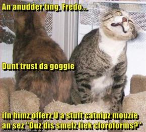 """An anudder ting, Fredo... Dunt trust da goggie ifn himz offerz U a stuft catnipz mouzie an sez """"Duz dis smelz liek cloroforms?"""""""