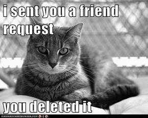 i sent you a friend request  you deleted it