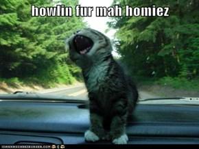 howlin fur mah homiez