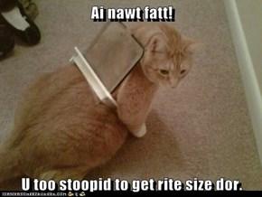 Ai nawt fatt!  U too stoopid to get rite size dor.