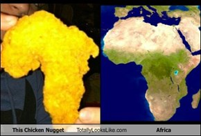 This Chicken Nugget Totally Looks Like Africa