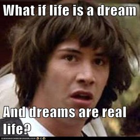 What if life is a dream  And dreams are real life?