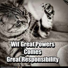 Wif Great PowersComes Great Responsibility