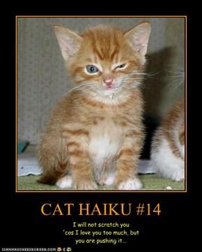 CAT HAIKU #14