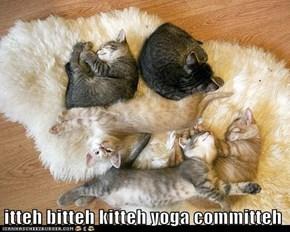 itteh bitteh kitteh yoga committeh