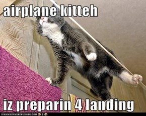 airplane kitteh  iz preparin 4 landing