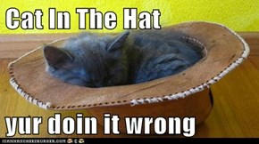 Cat In The Hat  yur doin it wrong