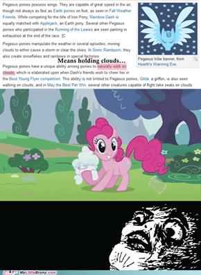She's a Pegasus?