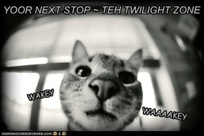 YOOR NEXT STOP ~ TEH TWILIGHT ZONE
