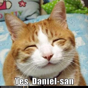 Yes, Daniel-san
