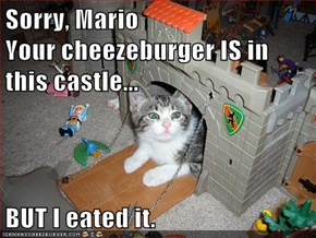 Sorry, Mario                         Your cheezeburger IS in this castle...   BUT I eated it.