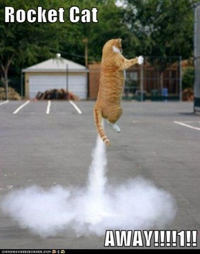 Rocket Cat   AWAY!!!!1!!