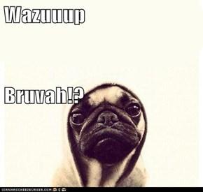 Wazuuup Bruvah!?