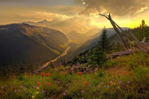 Wallpaper of the Day: Mt, Rainier National Park, Pierce County, Washington