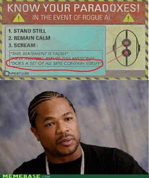 Yo Dawg, I Heard You Like Paradoxes