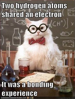 Two hydrogen atoms shared an electron  It was a bonding experience