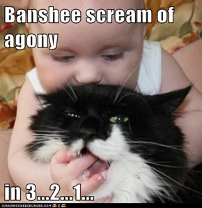 Banshee scream of agony  in 3...2...1...