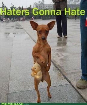 Dog Don't Give A Damn
