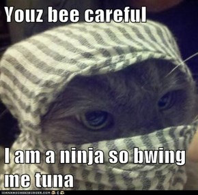 Youz bee careful  I am a ninja so bwing me tuna