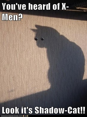You've heard of X-Men?  Look it's Shadow-Cat!!