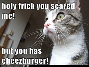 holy frick you scared me!  but you has cheezburger!