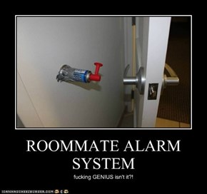 ROOMMATE ALARM SYSTEM