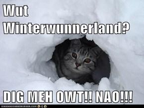 Wut Winterwunnerland?  DIG MEH OWT!! NAO!!!