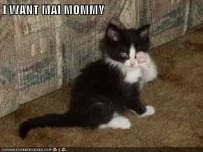 I WANT MAI MOMMY