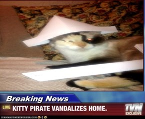 Breaking News - KITTY PIRATE VANDALIZES HOME.