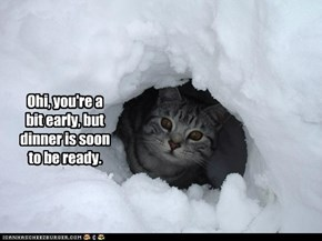 Hope you like snowballs