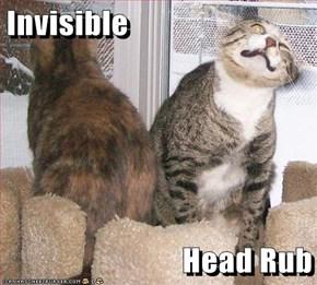 Invisible  Head Rub