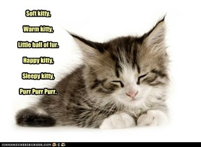 Soft kitty,Warm kitty,Little ball of fur.Happy kitty,Sleepy kitty,Purr Purr Purr.