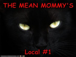 THE MEAN MOMMY'S  Local #1
