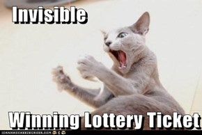 Invisible  Winning Lottery Ticket