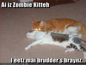 Ai iz Zombie Kitteh  I eetz mai brudder's braynz...