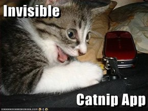 Invisible  Catnip App