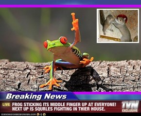 Breaking News - FROG STICKING ITS MIDDLE FINGER UP AT EVERYONE! NEXT UP IS SQURLES FIGHTING IN THIER HOUSE.
