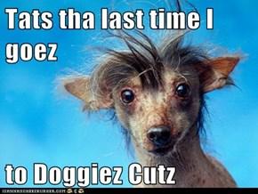Tats tha last time I goez   to Doggiez Cutz