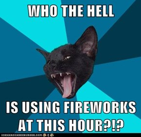 WHO THE HELL  IS USING FIREWORKS AT THIS HOUR?!?
