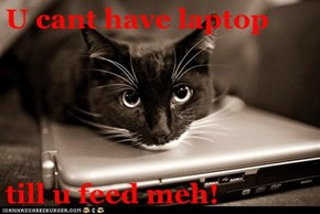 U cant have laptop  till u feed meh!