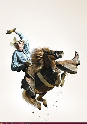The Pony Cowboy