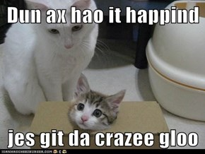Dun ax hao it happind  jes git da crazee gloo
