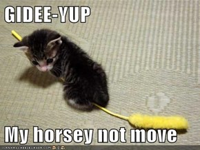 GIDEE-YUP  My horsey not move