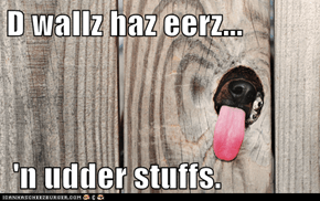 D wallz haz eerz...   'n udder stuffs.