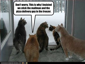 Don't worry. This is why I insisted we stick the mailman and the pizza delivery guy in the freezer.