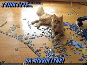 I TINK I'Z IS....  DA MISSIN LYNX!