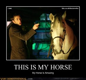 THIS IS MY HORSE