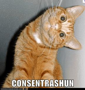 CONSENTRASHUN