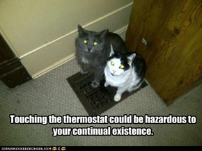 Touching the thermostat could be hazardous to your continual existence.