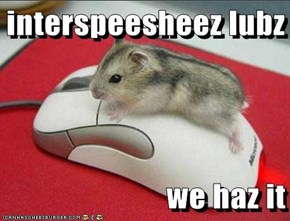 interspeesheez lubz  we haz it